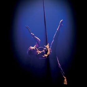 Casus Circus: Knee Deep